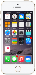 iPhone 5s 32GB Gold Refurb